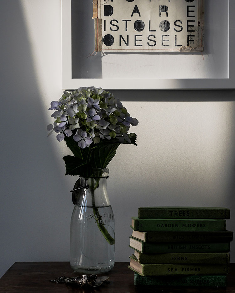 hydrangea and vintage books via perfectly imperfect living