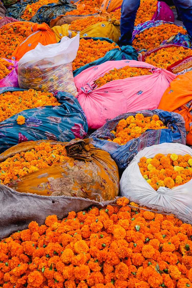 marigold filled saris via perfectly imperfectly living