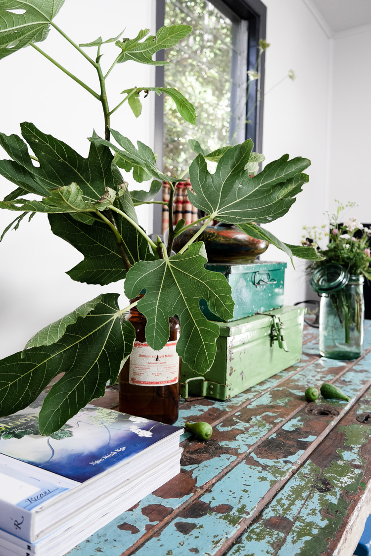 figs weeds and faffing via perfectly imperfect living