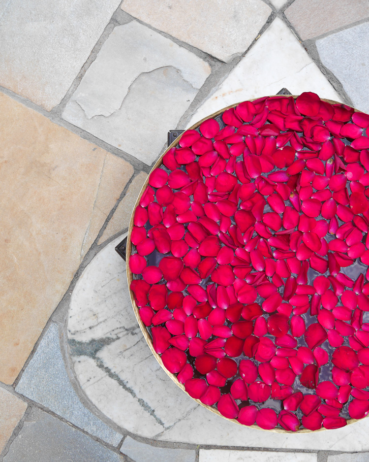 floating rose petals via perfectly imperfect living
