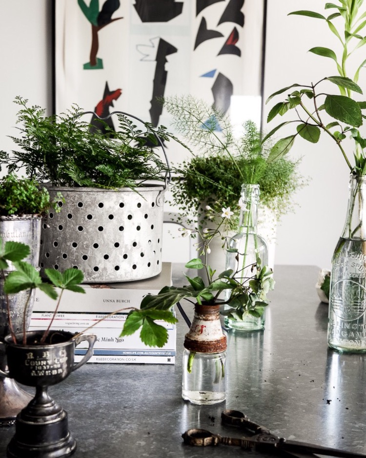 green styling via perfectly imperfect living
