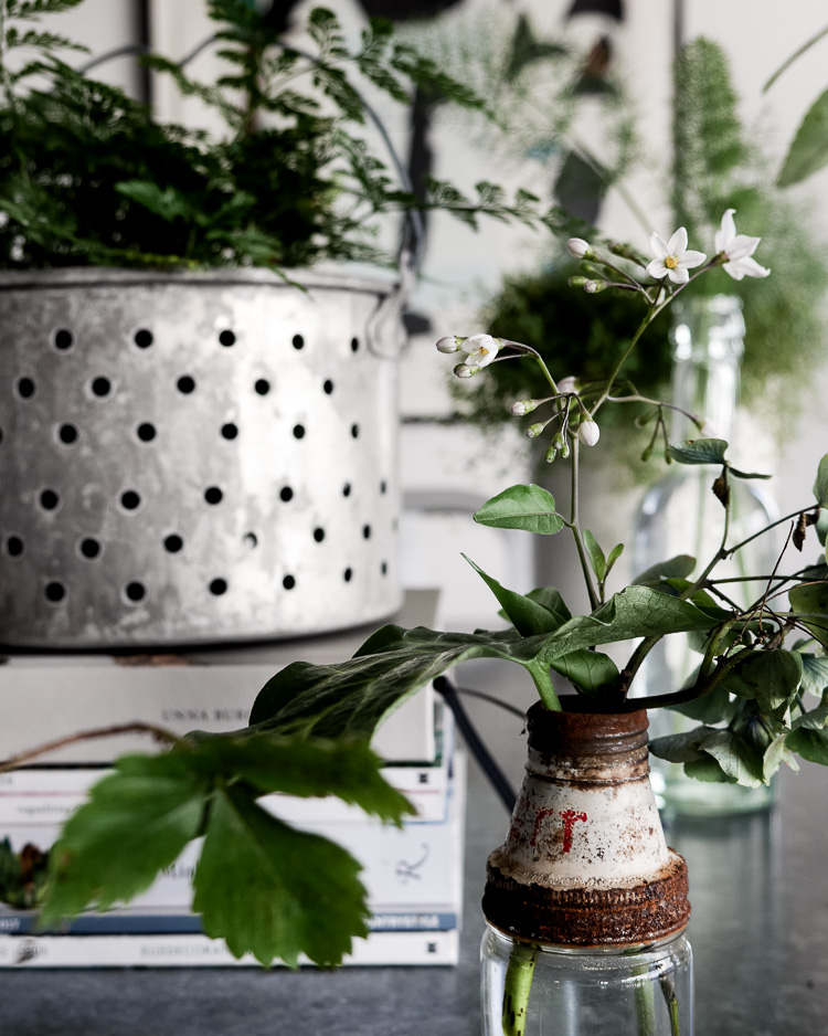 greenery and vintage vessels via perfectly imperfect living