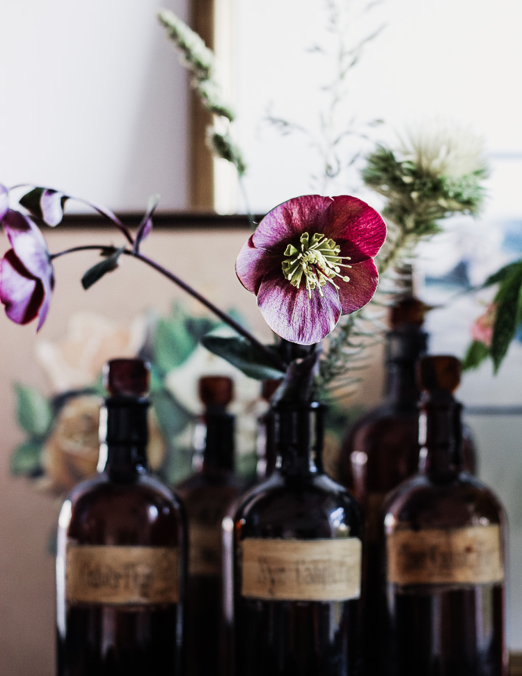 hellebores and apothecary bottles via perfectly imperfect living